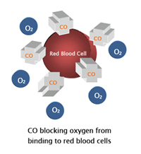 Carbon Monoxide blocking red blood cell image.